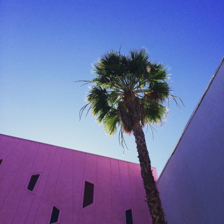 Palm Springs According To My iPhone...and Instagram